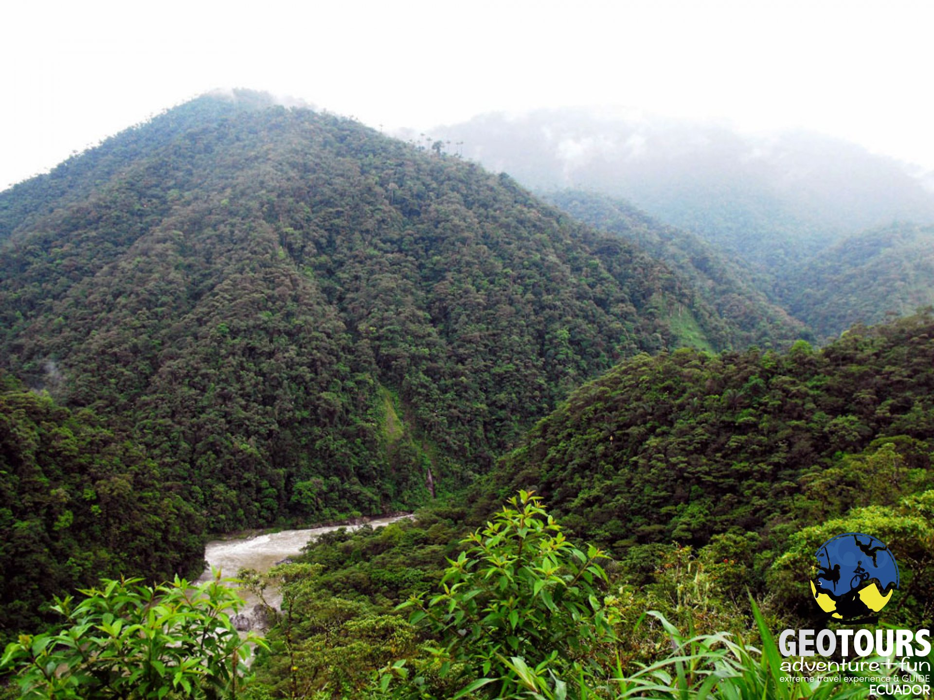 Llanganates – Sangay Ecological Corridor