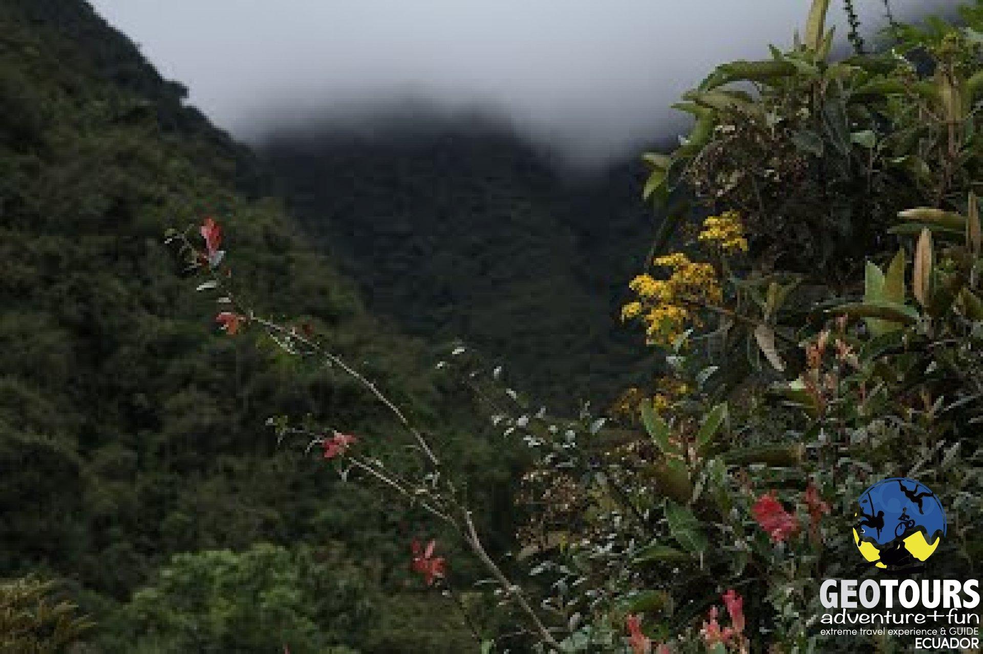Corredor Ecológico Llanganates - Sangay